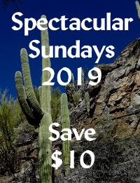 Save $10 on the ever popular 90 minute Classic Massage on Sundays in 2019